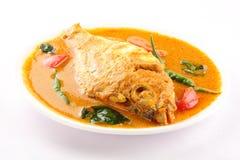 在辣咖喱汁烹调的鱼, 免版税库存图片