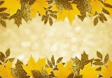 在边界的黄色和金黄秋叶 库存图片