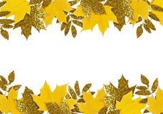 在边界的黄色和金黄秋叶 库存照片