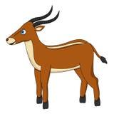 在边的布朗逗人喜爱的羚羊 免版税库存图片