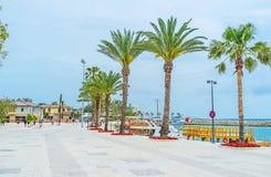 在边的海边散步 免版税图库摄影