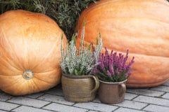 在边路的秋天装饰 免版税库存图片