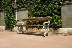 在边路的长凳有灌木作为背景的绿色树的 库存图片
