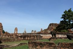 在边Wat Mahathat的一个看法 库存图片