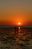 在达尔文港口的日落 免版税图库摄影