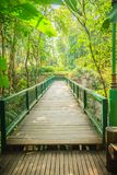 在迁徙的足迹之间的木和钢桥梁在tropica 免版税库存照片