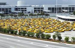 在迈阿密国际机场的计程汽车车站 库存照片