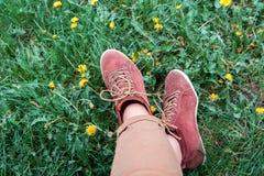 在运动鞋的女性腿在草用蒲公英 免版税库存图片