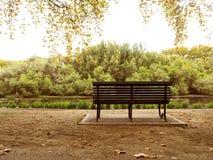在运河前面被安置的唯一椅子 库存照片