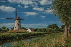 在运河旁边的老风车有灌木的和树丛在下午光和蓝天末期的背景中,在达默附近 免版税库存图片
