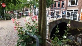 在运河的桥梁,德尔福特,荷兰 免版税图库摄影