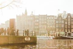 在运河的金黄早晨光在阿姆斯特丹 库存图片