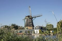 在运河附近的传统荷兰风车在弗雷兰在乡下在荷兰 库存图片