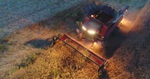 在运转的联合收割机上的鸟瞰图在日落的一个领域 拖拉机和农业机械收获 股票视频