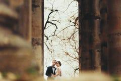 从在远处在站立在o之间的一对惊人的婚礼夫妇的神色 库存图片
