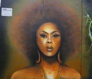 在远景高度邻里的墙壁上的艺术在布鲁克林 免版税库存图片