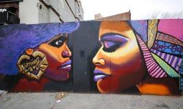 在远景高度邻里的墙壁上的艺术在布鲁克林 库存图片