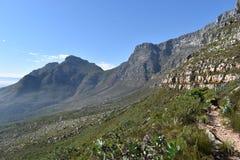 在远足在桌山的板材夹子的美妙的自然道路在开普敦,南非 免版税图库摄影
