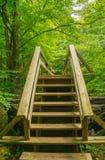在远足者人行桥的新的台阶沿阿巴拉契亚足迹 库存图片