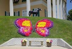 在迪克西惊逃音乐晚餐吸引力的花卉蝴蝶,布兰松密苏里 图库摄影