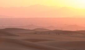 在迪拜,阿联酋的沙漠沙丘的热的日出 免版税库存图片