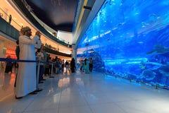 在迪拜购物中心,世界的最大的商城的水族馆 图库摄影