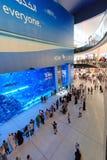 在迪拜购物中心,世界的最大的商城的水族馆 免版税库存图片