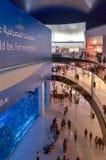 在迪拜购物中心,迪拜,阿联酋的水族馆 免版税库存图片