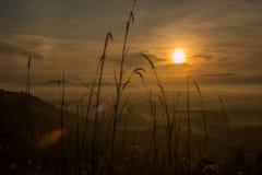 在迷雾山脉的日出 库存照片