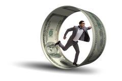 在追逐美元的仓鼠轮子的商人 免版税库存照片