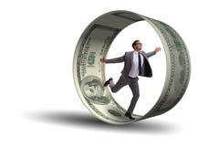 在追逐美元的仓鼠轮子的商人 免版税库存图片
