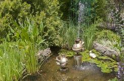 在退休金绿色人风景设计的金鱼  库存图片