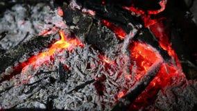 在退色的火的炭烬 股票录像