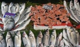 在逆鱼的各种各样的鱼在伊斯坦布尔购物 免版税图库摄影
