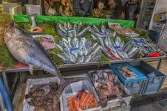 在逆鱼的各种各样的鱼在伊斯坦布尔购物 库存图片