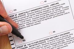 在选票的支柱37 免版税库存图片