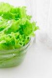 在透明塑料碗浸泡的新鲜的莴苣叶子 免版税库存图片
