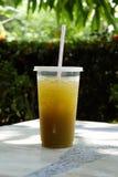 在透明塑胶容器的新鲜和冷的甘蔗汁有秸杆的 免版税库存图片