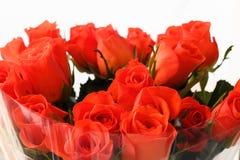 在透明清楚的玻璃纸包裹的橙色玫瑰 免版税库存照片