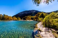 在透明的Frio河的明亮的美丽的秋叶 免版税图库摄影