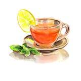在透明玻璃杯子的柠檬薄荷茶 手拉的水彩例证 免版税库存图片