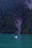 在途中的小瀑布对Mendelhall冰川 免版税图库摄影