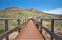 在途中的木走道对Pico在马德拉岛海岛做Furado 免版税库存图片