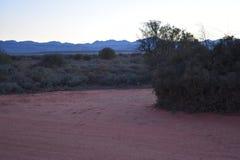 在途中的美好的日落对Meerkat冒险在Oudtshoorn,一点南部非洲的干旱台地高原在南非 库存图片