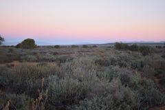 在途中的美好的日落对Meerkat冒险在Oudtshoorn,一点南部非洲的干旱台地高原在南非 库存照片