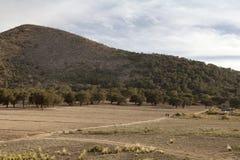 在途中的遥远的风景对Jalapa在墨西哥 免版税库存照片