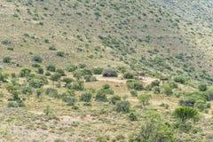 在途中的野餐斑点对荒芜观点谷  免版税库存图片