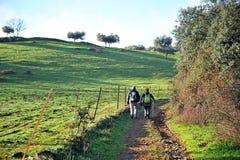 在途中的香客向圣地亚哥, Tentudia,通过de拉普拉塔,巴达霍斯,西班牙省  免版税图库摄影