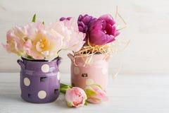 在逗人喜爱的泥罐的桃红色紫色郁金香 免版税库存图片