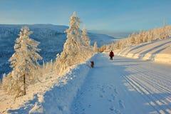 在通行证的衰落 冬天 夜间 Kolyma IMG_9570 免版税库存照片